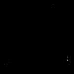 logo_shadows